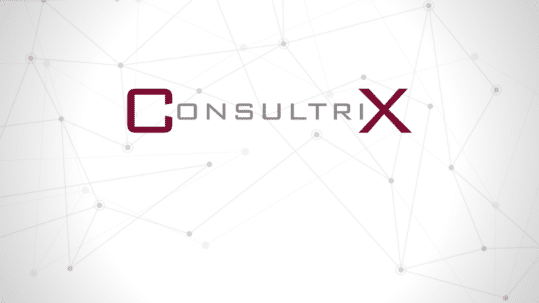 Consultrix - IT in 13 woorden