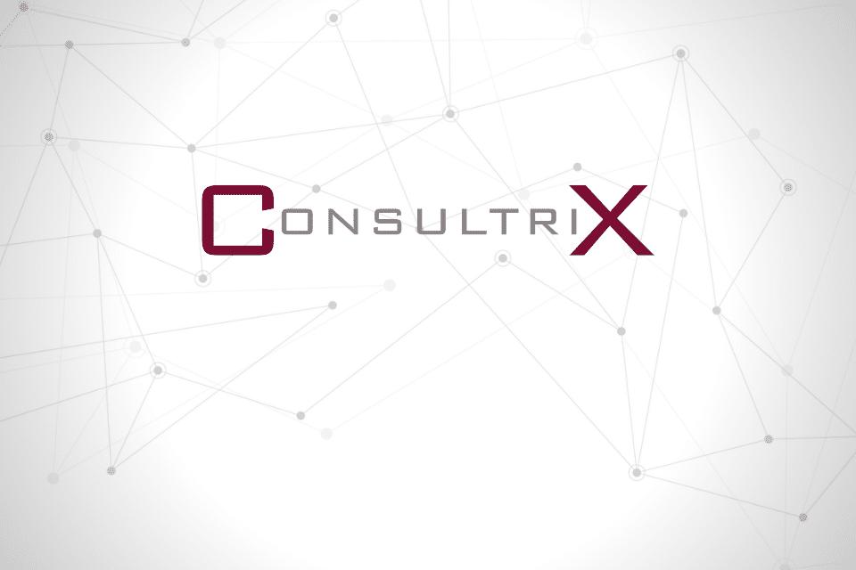 Consultrix - IT in 13 woorden